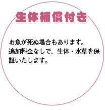 水槽レンタルするなら「水景デザインモデレート」 in 北九州