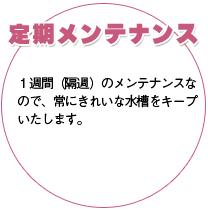 福岡県北九州市で熱帯魚・海水魚の水槽レンタルをしています。